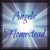 Angels-Homestead-Button