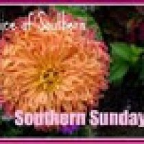 slice of souther (southern sunday)-3